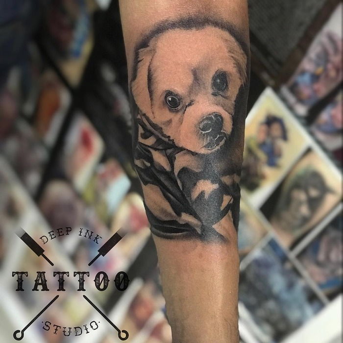 TattooExpo+/participants/P4zU2YJ3Ft/tattoo-expo-14826-682076dc807283732f9b1792d4cc3773.jpg
